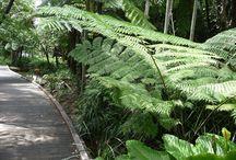 Nature Activities Mornington Peninsula