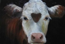 Herefords  / by Kayla Sue Ellett