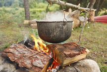 Traditional Foods Research