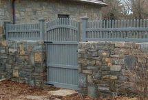plot predny