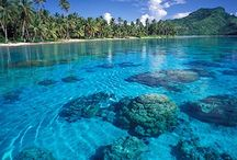 """1000 Places to See Before You Die - Australia, New Zealand & The Pacific Islands / Based on the book """"1000 Places to See Before You Die,"""" or as I call it - my travel bucket list"""