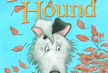 Read Alouds  / Books to read to the class