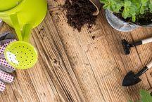 Seasonal Lawn & Garden Checklist