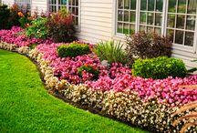 jardins lindos