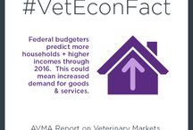Veterinary Economics / Economics and financial matters related to veterinary careers and veterinary practices - salaries, pricing, veterinary market forces, personal finances for veterinarians, veterinary student debt, income, and more.