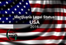 Marijuana Legal Status USA 2016
