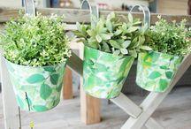 Balcony Gardening Ideas