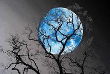 Le Lune M'Appelle