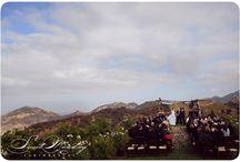 sweet monday weddings