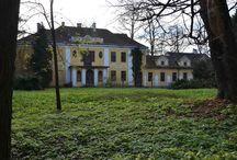 Strzegocice - Pałac