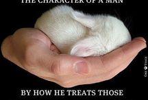 Animals...gotta love them!