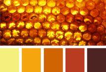 Colours / by Leanne Lapierre