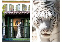 Rancho Las Lomas Weddings / Rancho Las Lomas Weddings by Christine Bentley Photography
