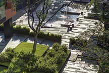 Miasta zieleni i formy