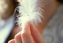 ♥♥♥Angels and Feathers♥♥♥