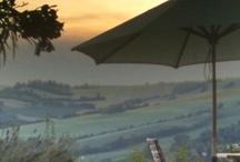 Lucertola bed & Breakfast in Le Marche, Italie / Italie. Lucertola twee-persoons appartementen en Bed & Breakfast in Le Marche, centraal Italie. #Vakantie bij Nederlanders in Italie.