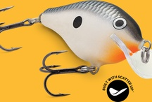 Hot New Fishing Lures/Baits / Check out all the most popular fishing baits!