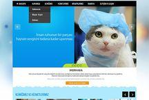 Evcil Hayvan-Veterinerlik Tasarımları / Web Tasarımı