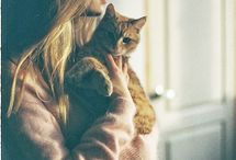 Cats & kitens