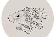 szczurky