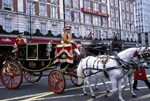 London / by Diane Henderson