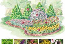 Сад: цветы