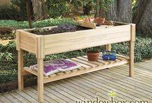 My Future Garden Nirvanna