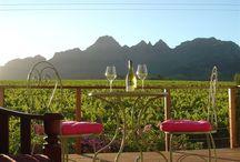 Stellenbosch, Winelands