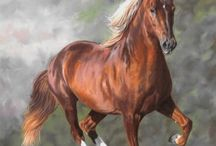 Beautiful Horses / by Nancy Stipa