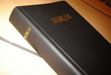 Lugbara /Africa Bibles
