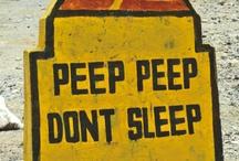 Peep Peep Don't Sleep