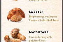 Food: Mushrooms