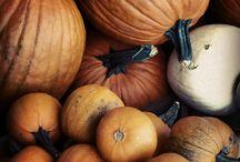 I love Fall / by Lisa Dolbert