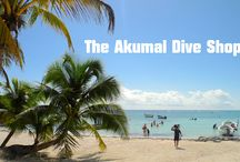 Welcome to The Akumal Dive Shop / The Place for Everyone that Loves Scuba Diving