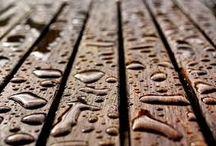 Las maderas de exterior y su resistencia. / El roble, el elondo o el ipé son las más utilizadas debido a su durabilidad natural y resistencia a la intemperiea madera se puede utilizar tanto en interior como en exterior. Responde bien en ambos casos, siempre que se instale una especie adecuada. Las más utilizadas en fachadas y jardines son el roble, la robinia, el ipé, el iroko o el elondo, debido a su resistencia a la intemperie y durabilidad natural.