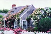 Garden Sheds, Greenhouses & Cottages / by SE Ⓥ Grl