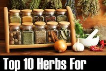 HERBS FOR HEALTH / HEALTHY HERBS