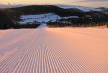 Sjezdovky ve SKiMU / Ski areál Malá Úpa je zimní středisko ve východních Krkonoších, které je díky své poloze 1 000 m n. m. jedním znejvýše položených středisek v České republice. Vysoká nadmořská výška a automatické zasněžovací systémy ručí za kvalitní sněhovou pokrývku po celou sezónu.