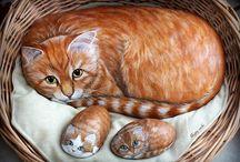 Sten katter