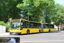 Dresden - Mercedes-Benz O530G Citaro / Sie sehen hier eine Auswahl meiner Fotos, mehr davon finden Sie auf meiner Internetseite www.europa-fotografiert.de.