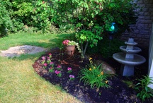 Gardening / by Donna Charles