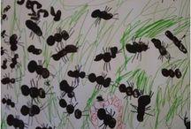 Insecten/bloemen