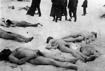 Holocaust / In this board you dont' find sharp images of this tragedy. I'm interested more in investigating the human tragedy before the death comes. The sadness, the indifference, the normality for some of a routine activity.