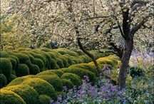 Gardens / Gardens, designers & details I like...