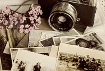 family history ideas / by Susan Spivey
