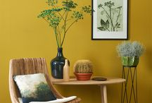 • Interior Yellow