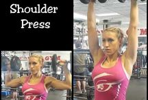 Fitness exercises / Exercises for the gym and fitness