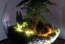 Işıklı terraryum