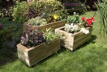 Timber Planters / Timber Planters