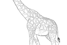 animals drawing ideas